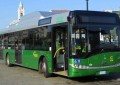 Francavilla: gli autobus tornano su viale Nettuno