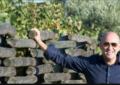 Nicola D'Auria confermato presidente del Movimento Turismo Vino Abruzzo