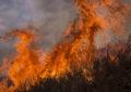 Incendio lungo il Fondovalle Alento
