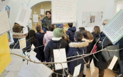 Torrevecchia: il MLA protagonista indiscusso dei progetti scolastici