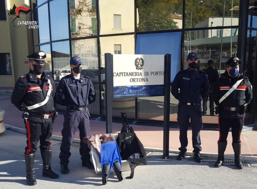 Oltre 20 kg di polpo pescato nel bagagliaio: fermato dai Carabinieri di Ortona