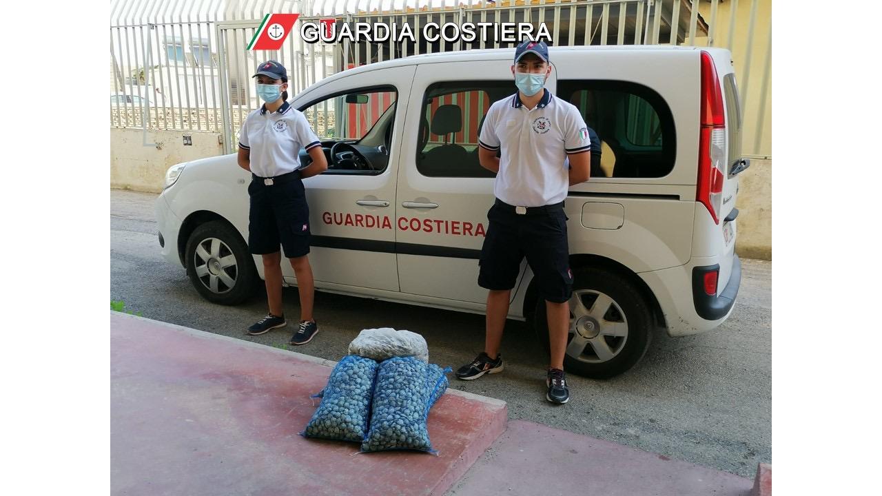 Etichette false e commercio abusivo di vongole. Denunce della Guardia Costiera